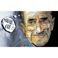 Mouais Bof - Portrait infographique